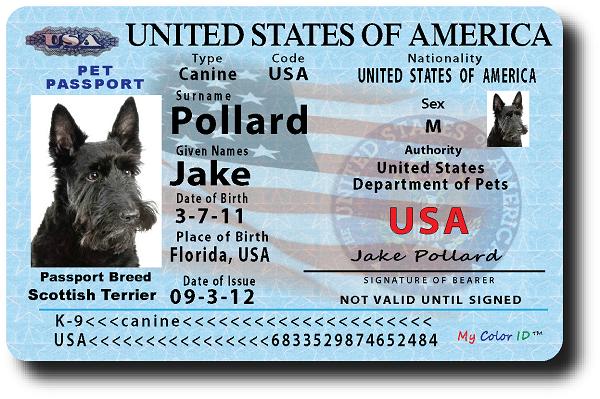 Where Do I Get A Passport For My Dog