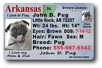 Arkansas Drivers License