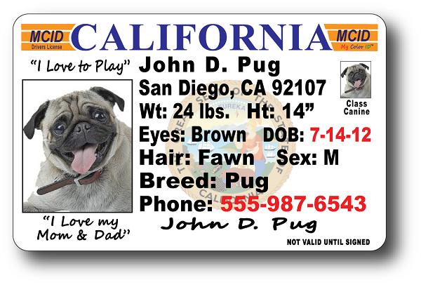 Californiadriverslicense