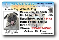 Minnesota Drivers License