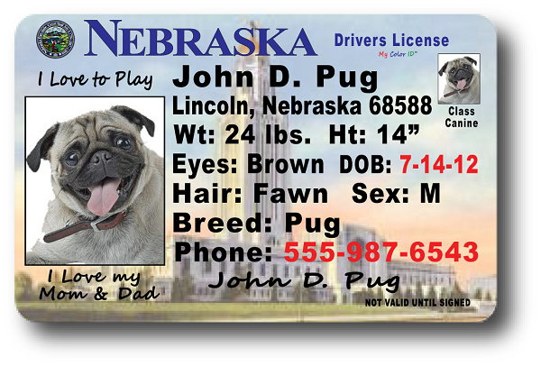 Nebraska Drivers License Pictures To Pin On Pinterest