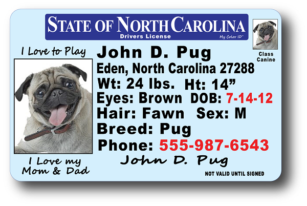 state of nc drivers license