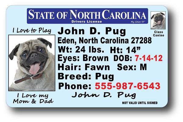 North License Carolina Drivers North Carolina