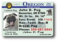 Oregon Drivers License