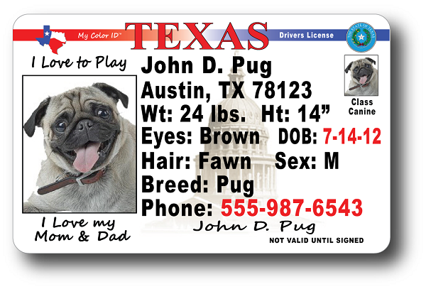 License Drivers License Texas License Drivers Texas Texas Drivers
