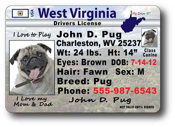 West West Drivers License Virginia Virginia Drivers License West