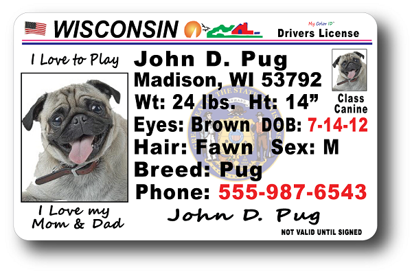 Wisconsin Drivers License Wisconsin Drivers License Wisconsin Drivers License