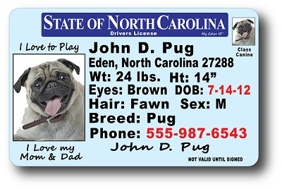 North Carolina Drivers License
