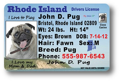 Rhode Island Drivers License