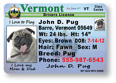Vermont Drivers License