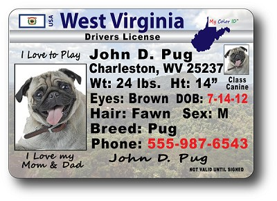 West Virginia Drivers License
