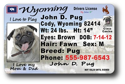 Wyoming Drivers License