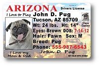 Arizona Drivers License