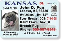Kansas Drivers License