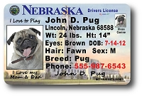 Nebraska Drivers License