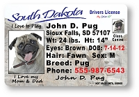 South Dakota Drivers License